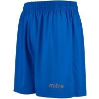 Metric II Shorts - Royal