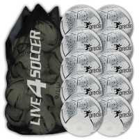 Fusion White/Silver 10 Ball Deal Plus FREE Bag